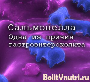 salmonel01 300x276 - Острый гастроэнтероколит: инфекционная и неинфекционная формы